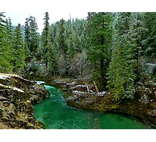 River Of Many Greens Photographic Print