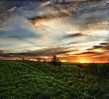 Hilltop Sunset by Vicki Field