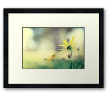 We are shining bright Framed Print