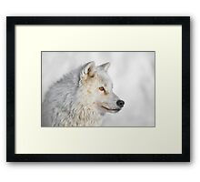 Look my Way Framed Print