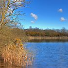 Longlands lake by seanduffy