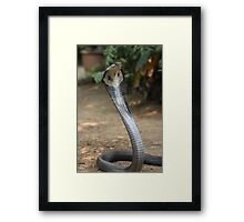 Don't get to close Framed Print