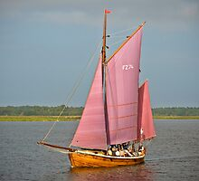 Zees Boat on Lagoon near Zingst, Germany. by David A. L. Davies