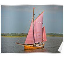 Zees Boat on Lagoon near Zingst, Germany. Poster