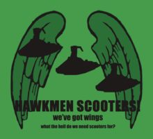 fly my hawkmen! by kjen20