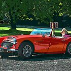 Red Austin Healy by Brandon Taylor