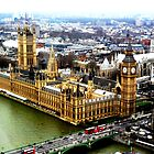 Westminster by Alison Ward