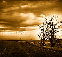 Two Trees Sepia Fields by Vicki Field