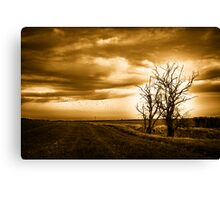 Two Trees Sepia Fields Canvas Print
