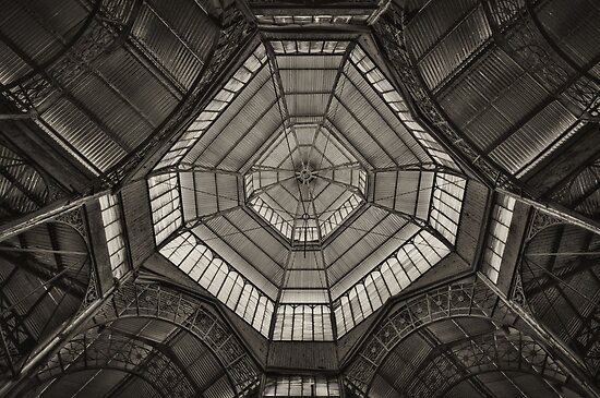 Ceiling by Peter Hammer