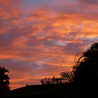 Brissie sunrise by PhotosByG