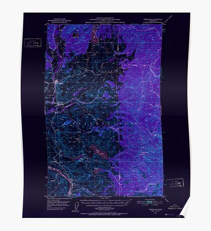 USGS Topo Map Washington State WA Nespelem 242795 1950 62500 Inverted Poster