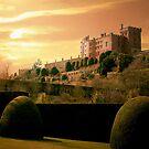 Powis Castle ......... by Richie Dean