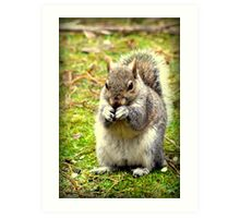 Pretty please can I have a nut. Art Print