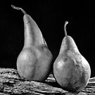 A Pair of Pears by Phillip M. Burrow