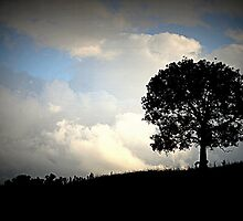 Silhoutte against Stormy Skies by Candice84