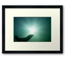 The Silhouette Framed Print