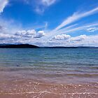 Beach at Cockle Creek, Southern Tasmania by Colgal