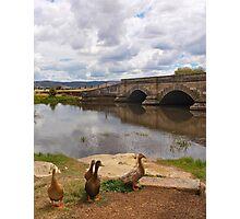 Ross bridge Photographic Print