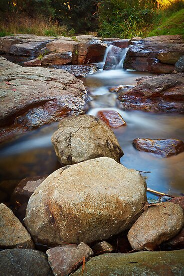 New Town Rivulet #12, Tasmania by Chris Cobern