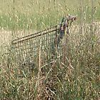 Camouflaged Trolley by Nancy  Joan