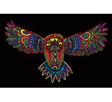 Black owl Photographic Print