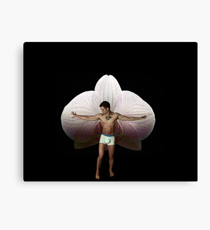On Orchid Wings Canvas Print