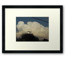 Superstorm's 1 Framed Print