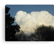 Superstorm's 4 Canvas Print