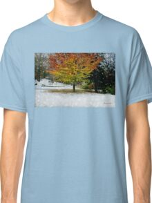 Beech Tree ~ Caught in a Snow Flurry Classic T-Shirt