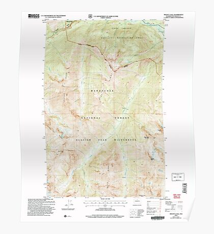 USGS Topo Map Washington State WA Mount Lyall 242503 2004 24000 Poster