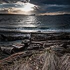 English Bay, Sunset by toby snelgrove  IPA