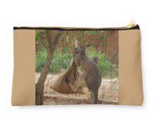 Kangaroo kicking a sack. Studio Pouch