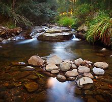 New Town Rivulet #15, Tasmania by Chris Cobern