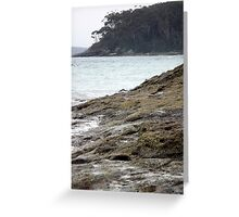 The Distant View Greeting Card
