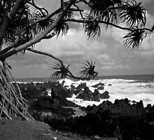 On the Fringe of Paradise by Brandon Beresini