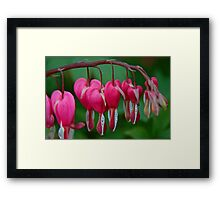 They Bleed For You Framed Print