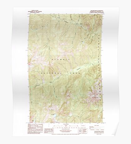 USGS Topo Map Washington State WA The Brothers 244245 1985 24000 Poster