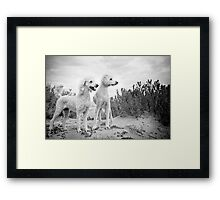Dudley & Willow Framed Print