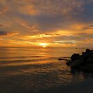 Golden Sunset by Jackson  McCarthy