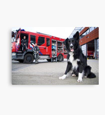 Firefighter Dog Canvas Print