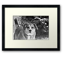 Working it Out Framed Print