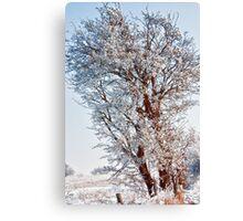 Tree Full of Snow Canvas Print