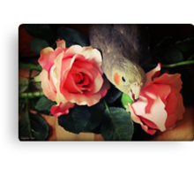 Hope You Don't Mind Me Having A Nibble Canvas Print