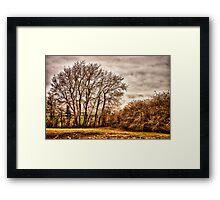 Countryside Ramblings Framed Print