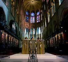 Notre-Dame de Paris, March 2012 by Stefan Stuart-Fletcher