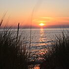 Sunset on Lake Michigan by Sonya Lynn Potts