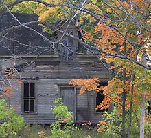This Old House by Sonya Lynn Potts