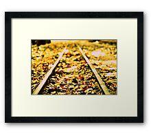 On track.... Framed Print