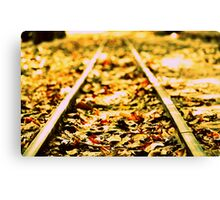On track.... Canvas Print